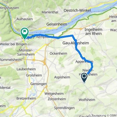 Bingen über Gau-Algesheim