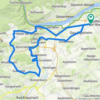 001n Ingelheim - Bin Rochusberg - Waldlaubersheim - Windesheim - Bretzenheim - Weinberge Langenlonsheim - Dorsheim - Ockenheim - Ingelheim