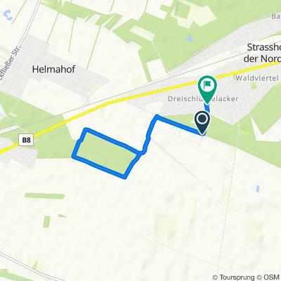 Moderate Route in Strasshof an der Nordbahn