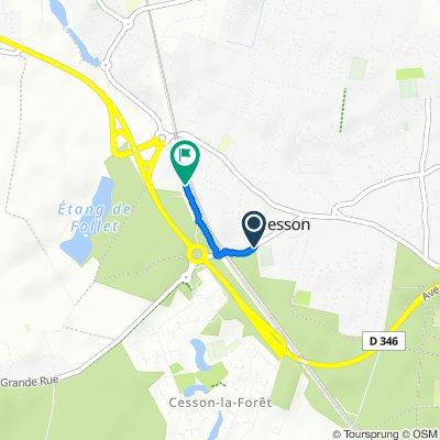 Itinéraire modéré en Cesson
