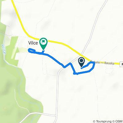 Route to Austrumu iela 17, Vilce