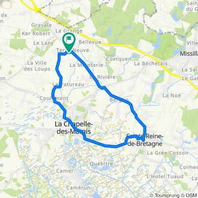 Sainte Reine de Bretagne-La Chapelles des Marais