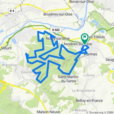 Foret de Carnelle au départ de Asnières sur Oise