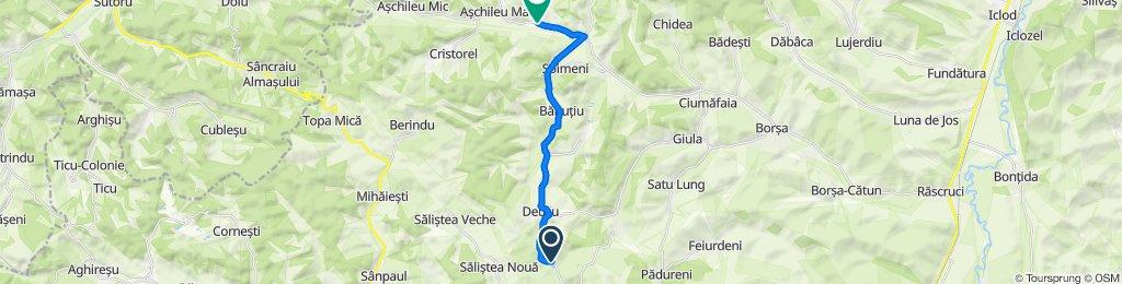 M-Chinteni Lac Pl. to DJ109 142, Fodora