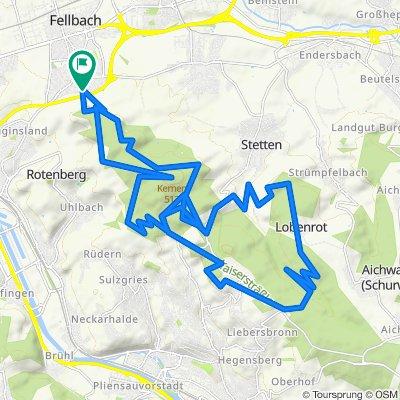 Fellbach MTB +  Singletrails