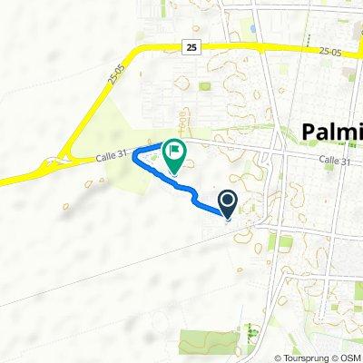 De Carrera 38 2307, Palmira a Carrera 45 A, Palmira