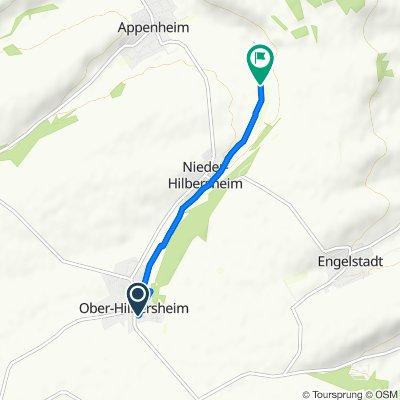 Gemütliche Route in Nieder-Hilbersheim