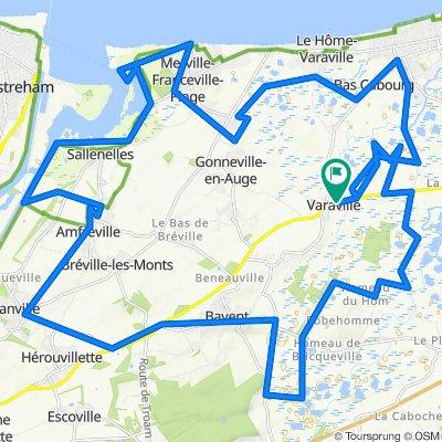 Marais de Cabourg / Amfreville / Franceville