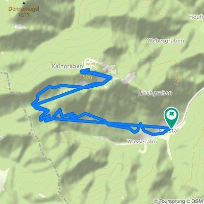 Grosse Sonnleitstein - Hinter Nasswald