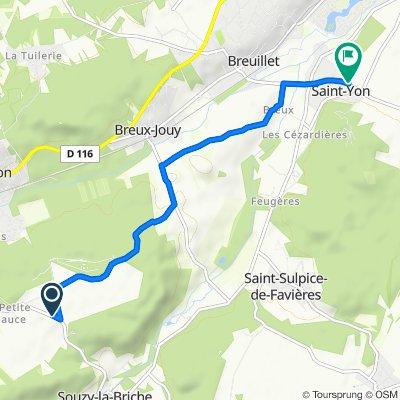 De D132, Saint-Chéron à 54 Route de Boissy, Saint-Yon