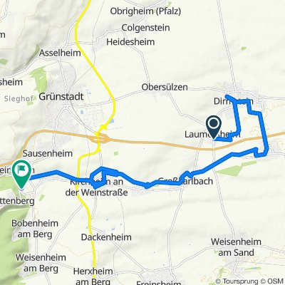 Langsame Fahrt in Dackenheim