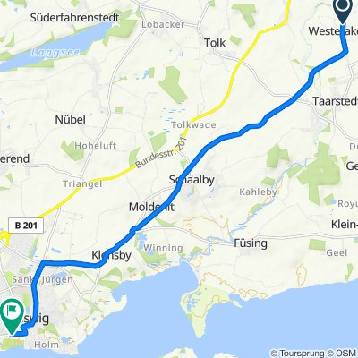 Route Taarstedt - Schleswig