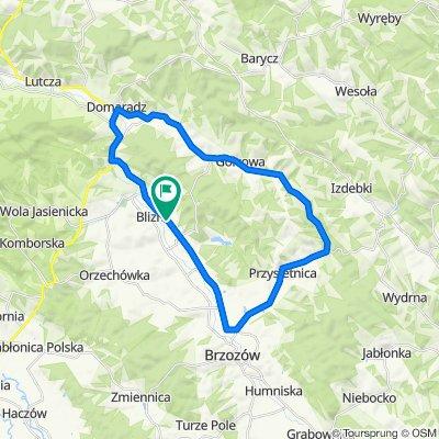 Droga Wojewódzka 886 450, Blizne do Blizne