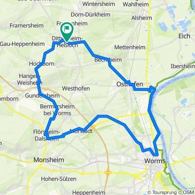 Kloppberg - Rheineben und Zurück