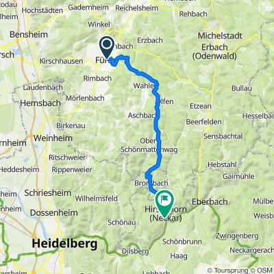 Nibelungenland bis Hirschhorn per MTB