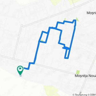 Restful route in Timișoara