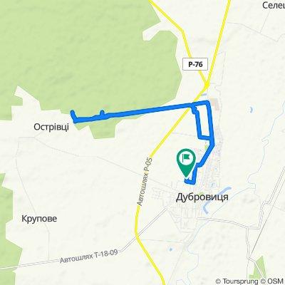 Легкий маршрут в Дубровица