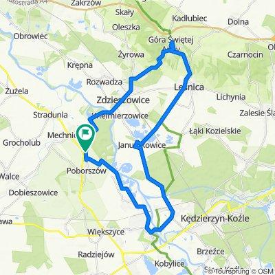 Szybka trasa w Reńska Wieś
