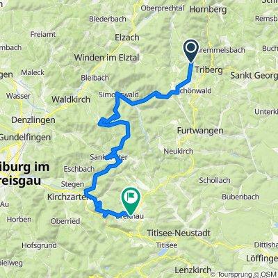 05_Schonach-Breitnau