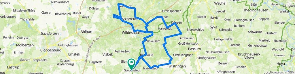 RTF Goldenstedt 2020 115 km