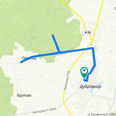 Неторопливый маршрут в Дубровица