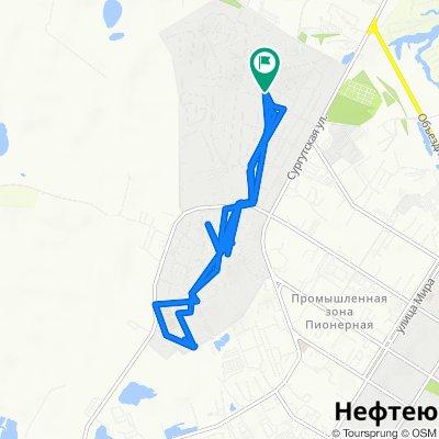 От Лесной переулок 5А, Нефтеюганск до Лесной переулок 5А, Нефтеюганск
