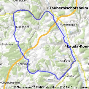 Mittlere Tour von Königheim nach Königheim