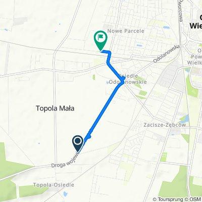 Steady ride in Ostrów Wielkopolski