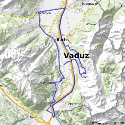 Triesen-Balzers-Azmoos-Oberschaan-Gams-Haag-Triesenberg-Sevelen