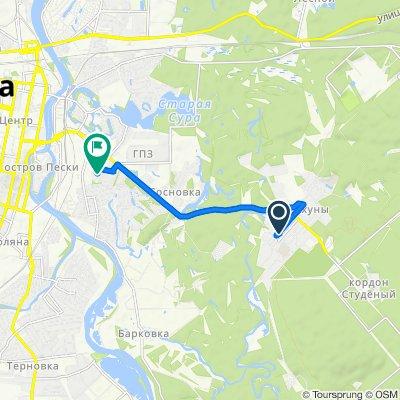 Быстрая поездка в Пенза