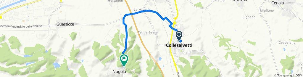 Da Via Nino Bixio 49, Collesalvetti a Via della Cerreta 2, Collesalvetti