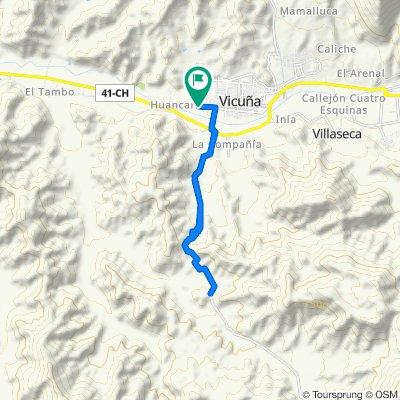 De Camino a Huancara, Vicuña a Camino a Huancara, Vicuña