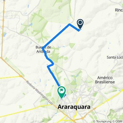 Steady ride in Araraquara