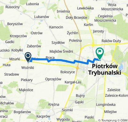 Woźniki 7, Wola Krzysztoporska do Topolowa 1a, Piotrków Trybunalski