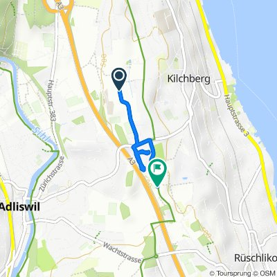 Langsame Fahrt in Kilchberg ZH