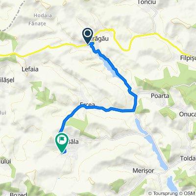Route from DN16, Fărăgău