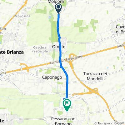 Da Via Luigi Galvani 2, Burago di Molgora a Viale Piave 37, Pessano Con Bornago