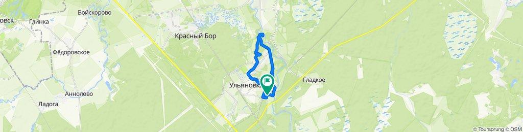 Окрестности Ульяновки