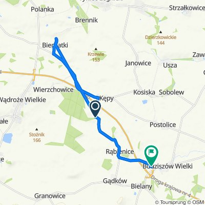 Unnamed Road do Budziszów Wielki