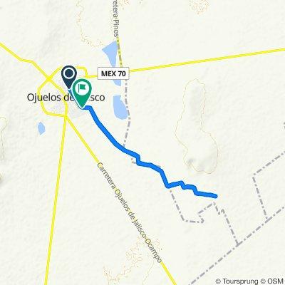De Riva Palacio 45, Ojuelos a Vereda 764, Ojuelos