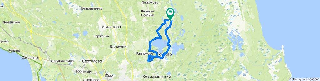 От Сосновая улица, Лесколовское до Сосновая улица, Лесколовское