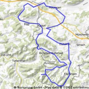 Zwischen Thurgau und Züriland