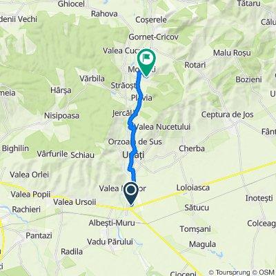 Route from DJ102C, Albeşti-Paleologu