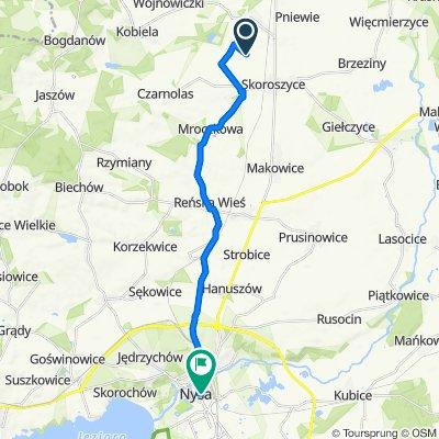 Trasa do Biskupa Jarosława 8, Nysa
