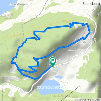 Rundweg Seelisberg: Auf dem Förster-Trail