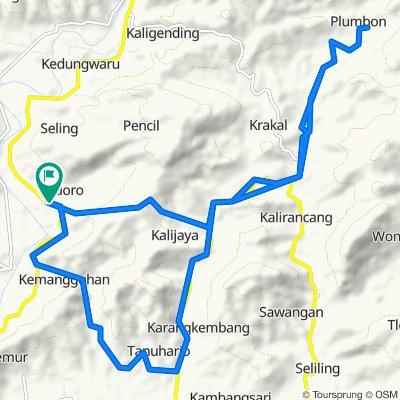 Track Widoro - Air Terjun Kalicurug