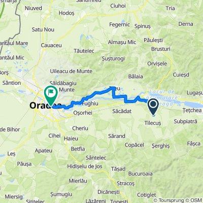 DJ767, Tilecuș to Calea Mareșal Alexandru Averescu nr 7, Oradea