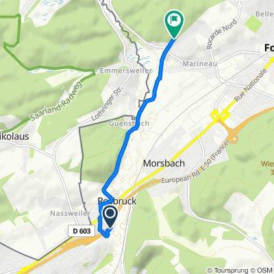 Itinéraire modéré en Forbach
