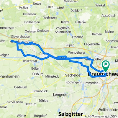 Hämelerwald