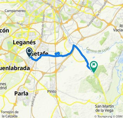 De Poligono Vp. Buenavista 17T, Getafe a Carretera de San Martín de la Vega, Getafe